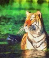 panthera tigris watercolor by rhythmichysteria