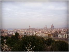 Firenze (panorama view) by SeiMissTake