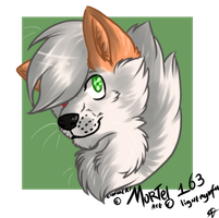 Mortel headshot by Lightnymfa