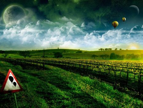 Balloon over the field. by divine-Providence