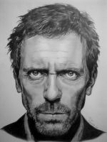 Hugh Laurie by Artsrajz