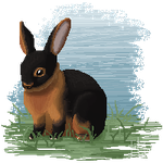 Black and Tan Rabbit pixel by BE-Arts