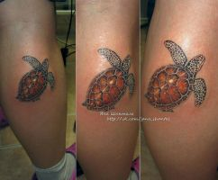 sea turtle by janashantal