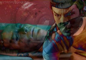 Spock Kirk Until The End Of The World by spock2u