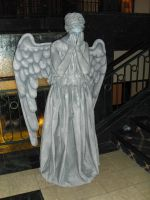 The Weeping Angel by Neville6000