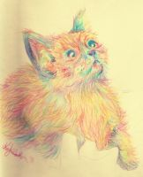 RAINBOW KITTEH by ClumsyKee