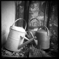 Watering Cans by Bogbrush