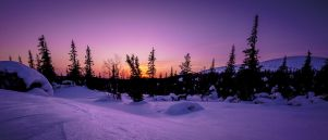 Sunset in Lapland by CarpathianWolf
