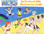 Straw-Hat Pirates On The Beach by zoro4me3