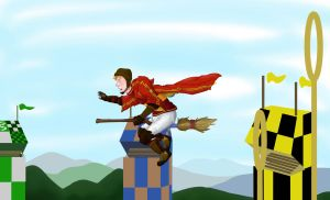 Ron: Quidditch: Unfinished by Toosh512