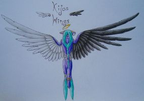 Kijas wings... by LonlyAntelope