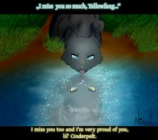 I miss you... - Cinderpelt and Yellowfang by Druggedkitten