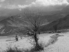 winter in the mountains by lightycloud