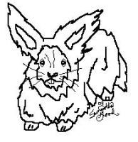 FREE Angora Rabbit Lineart by faery-dustgirl