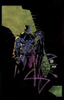 batman and catwoman by RSB13