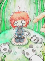pandas, rabbit and the big hand by vaiRet