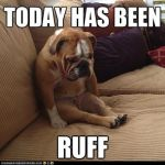Bulldog Has Had A Ruff Day by SMDXSeries
