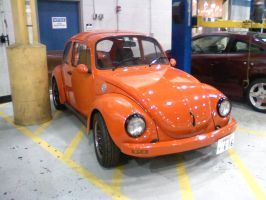 My schools Beetle by Steven304