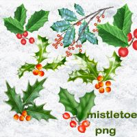 mistletoe by roula33