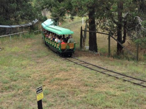 Wildlife Express  by TaionaFan369