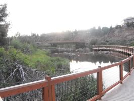 Just around the river in Bend by Zyanith
