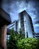 The University by Networ-k