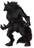 Werewolf by Silverbirch