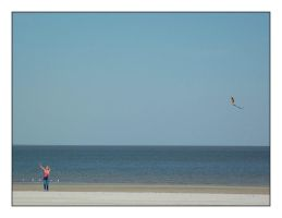 Lets Go Fly A Kite by hansepe