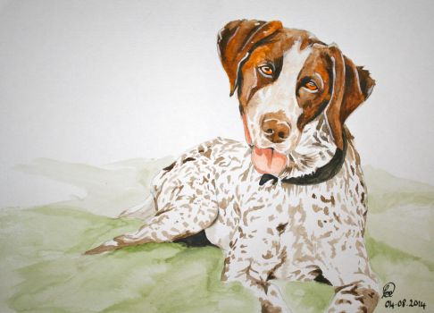 German pointer watercolour by buffywolf
