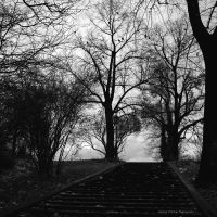 stairs by guality