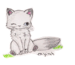 Sai, the little kitten. by Nayirah