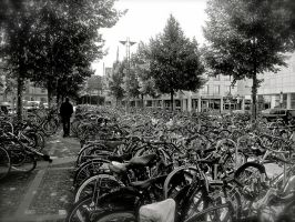 Where the hell is my bike? by Xfluegge