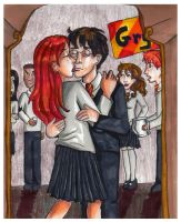 HBP SPOILER- Harry,Ginny by bachel60