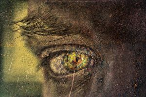eye contact by nepesh