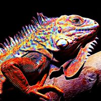 Colored Fractalius Lizard by megaossa