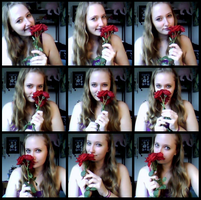 Roses, Roses by syberklaw