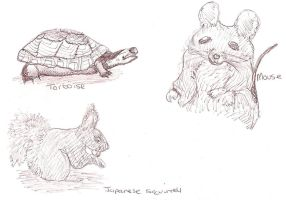 Animal Sketches by HesterK