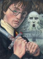 Harry Potter by tavington