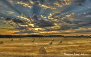 August.2013.Hungary. HDR. by magyarilaszlo