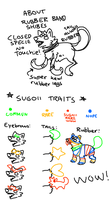 Sugoii info about rubber band shibes by Shamboro