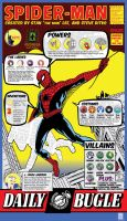 Spiderman Infographic by MC-Thomas