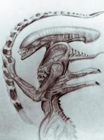 Alien by DiegoE05