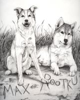 Max and Rootku by Sotalean