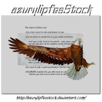 3D object - eagle1 by AzurylipfesStock