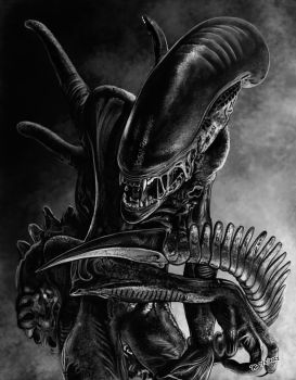 Xenomorph by freakingfabulous