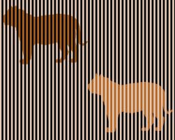 Are these 2 tigers the same color? by megaossa