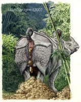 Asian rhino dung heap by LeenZuydgeest