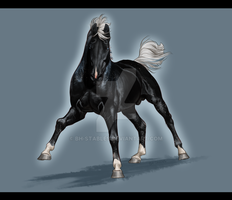 Chevalier- mini commish for MuchasBellas by BH-Stables