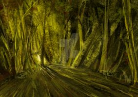 light in the wood by CubitusRouge