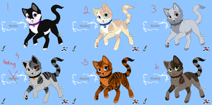 Point cat Adopts: open by good-within-u